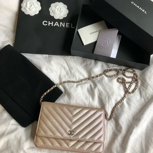 Chanel limited edition 2017 SS Pink Mermaid WOC